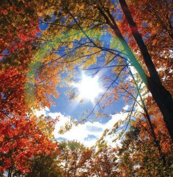 Miholjsko Ljeto Jesen Sunce