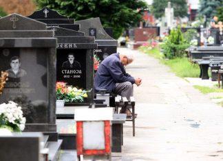 Gradsko Groblje Foto S Pasalic 1 E1578838287263
