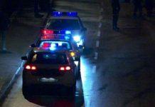 Policija Federacija 2