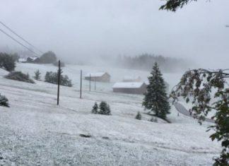 Snijeg 0